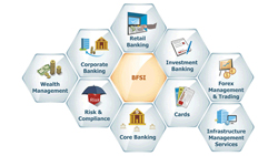 Banking Financial Services & Insurance